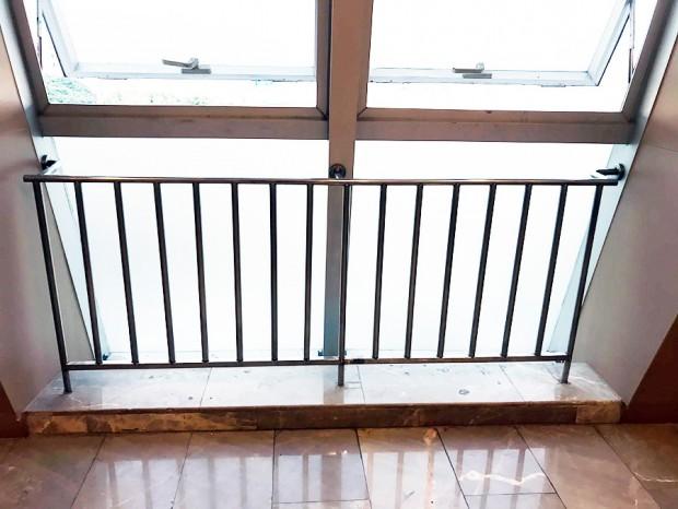 不锈钢窗前护栏 LG-065